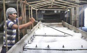हरियाणा में 38.62 लाख क्विंटल चीनी का उत्पादन