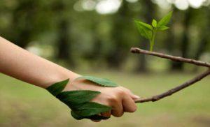 प्रकृति के सन्देश को  अनदेखा करता इंसान