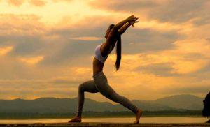 विश्व योग दिवस : स्वास्थ्यपूर्ण दिल के लिये छह योगासन