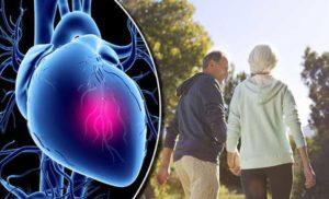 जीवनशैली में बदलाव, आहार, व्यायाम और योग के जरिए हृदय रोगों की रोकथाम